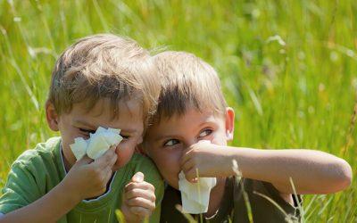 Als Asthma- und Neurodermitistrainer gehören allergische Erkrankungen zu den Schwerpunkthemen in unserer Praxis.